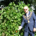 Mayors challenge and charity 232