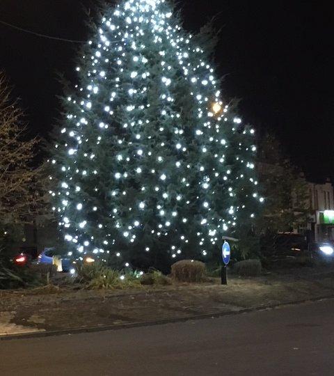 Mere Green Christmas tree